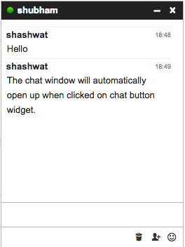 Chat button widget launches chat window
