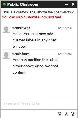 iFlyChat - Add custom label in chat window